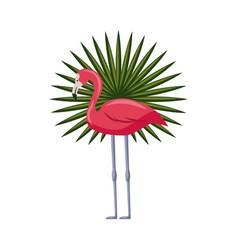 Pink flamingo icon vector
