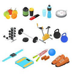 Sport color icons set isometric view vector