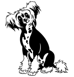 chinese crested dog black white vector image