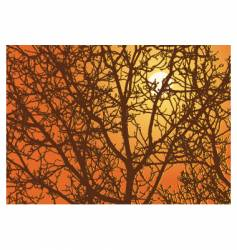 Branches sundown vector