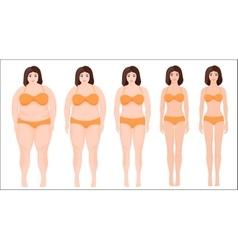 Woman diet concept woman slimming stage progress vector image