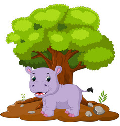 Cartoon hippos in the jungle vector