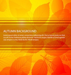 Fall abstract floral background vector image