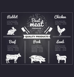 hand drawn of domestic animals vector image vector image