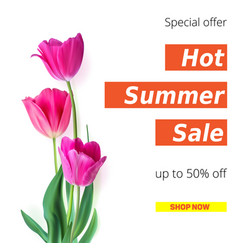 hot summer sale banner with fifty percent discount vector image vector image