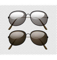 two different color lens of sunglasses vector image