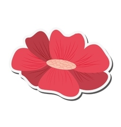 Delicate flower icon vector
