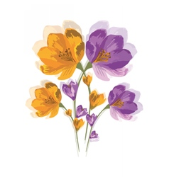 Spring summer colorful flowers vector
