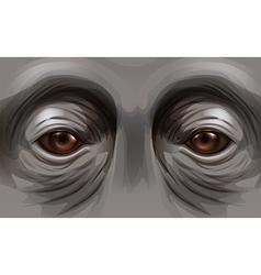 Eyes of an orangutan vector