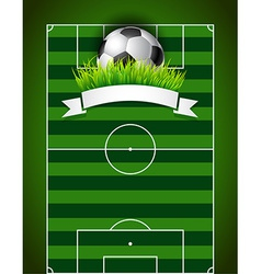 Football or soccer ball on green field background vector