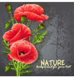 Background for your text with red poppies vector