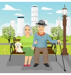 Senior couple sitting on wooden bench in city park vector