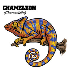 chameleon in hand drawing style vector image vector image