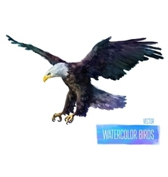 watercolor style of bird vector image vector image