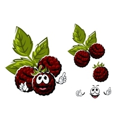 Cartoon blackberry berries fruits with leaves vector