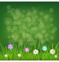 Background with grass and flowers vector image
