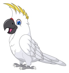 Cockatoo cartoon posing vector