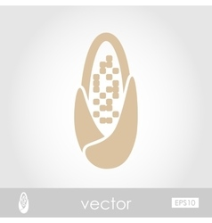 Corncob icon vector image
