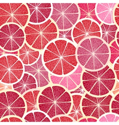 Grapefruit seamless big background vector image vector image