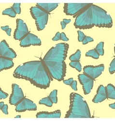 Summer seamless pattern with turquoise butterflies vector image vector image