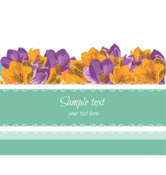 Greeting card with spring summer colorful flowers vector