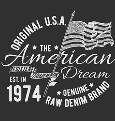 T-shirt typography design usa printing graphics vector