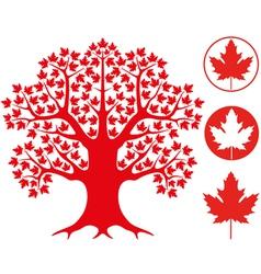Maple tree vector