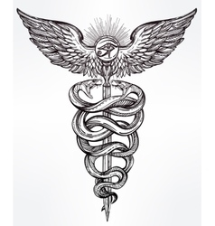 Caduceus symbol of god mercury vector