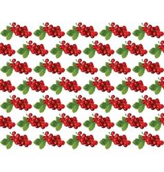 Cranberries vintage pattern vector