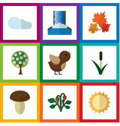 Flat icon ecology set of tree canadian vector
