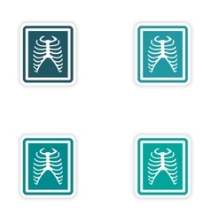Set paper stickers on white background x-rays of vector