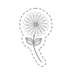 Camomile flower decoration cut line vector