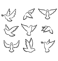 collection of Dove birds logo for peace concept an vector image