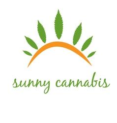 Concept icon cannabis with sun vector