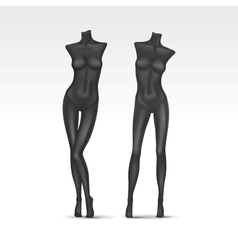 Isolated female mannequin vector