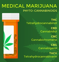 Medical marijuana phyto cannabinoids concept vector