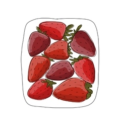 Strawberry sketch for your design vector