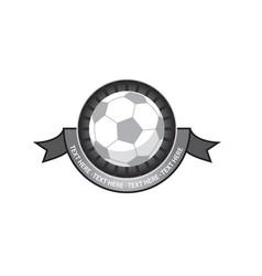 soccer emblem retro vector image