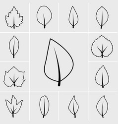 Line icons leaf vector