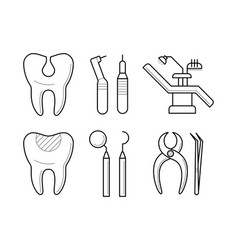 set of stomatological elements icons vector image vector image
