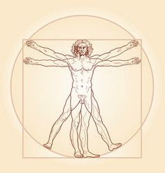 The vitruvian man vector