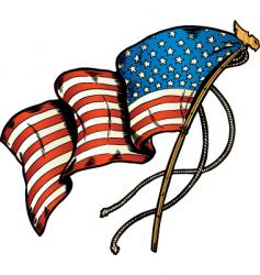 American flag bane vector image