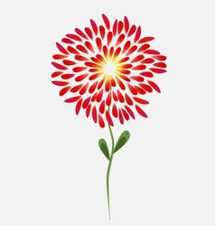 Flower-2 vector image vector image