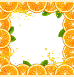 frame of fresh oranges vector image vector image