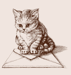 Small cat sitting on an envelope vector