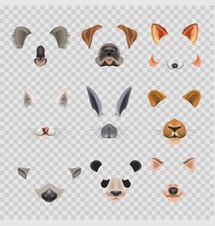 video chat effects animal faces flat icons vector image vector image