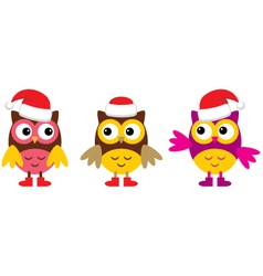 Owl in christmas hats vector