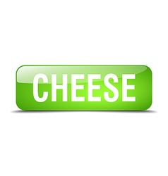 Cheese green square 3d realistic isolated web vector