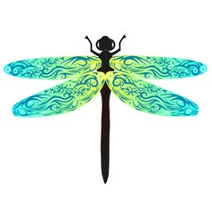 dragonfly blue vector image vector image