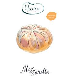 fresh white mozzarella cheese vector image vector image